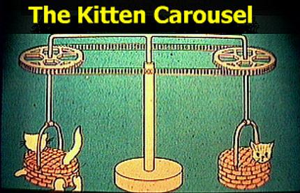 تجربة القطتان